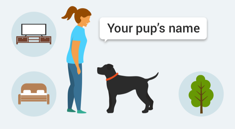 Learn how to train your dog to Name with GoodPup.